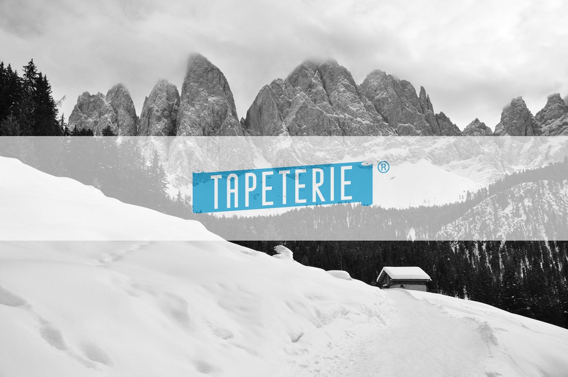 Fototapeten Winterlandschaft : Fototapete Nebeneinander – Bergmassiv mit Schnee Tapeterie