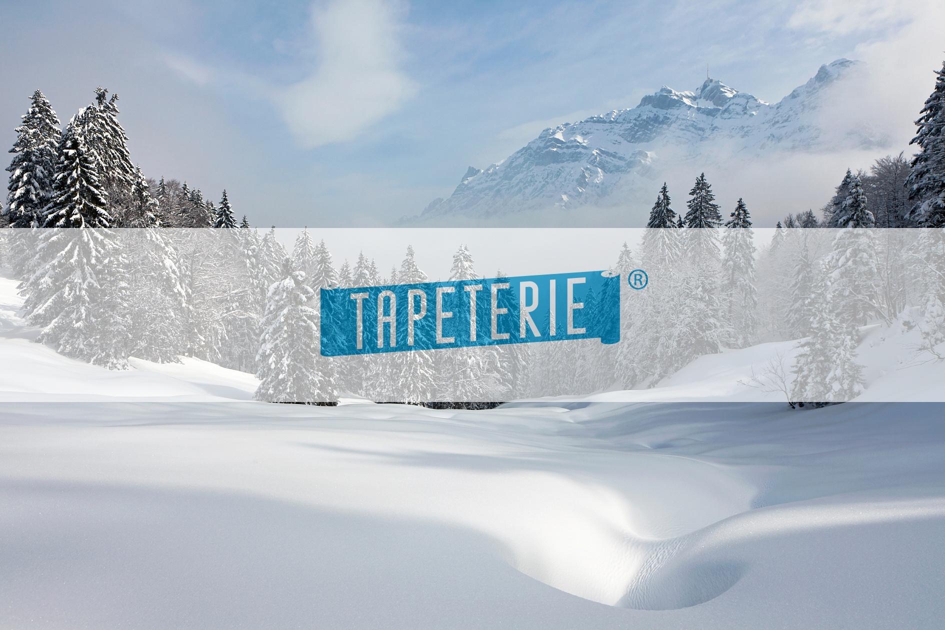 Fototapeten Winterlandschaft : Fototapete unber?hrte Winterlandschaft Tapeterie