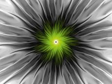Design-Serie Farb-Spirale 6