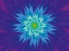 Design-Serie Phantasie-Blumen 19