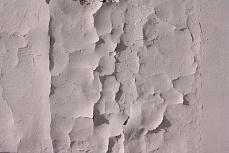 squama di muro