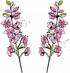 Natur im Raum, Farbvariante: pink, rosa