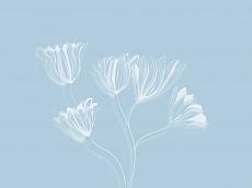 Blüten, Farbvariante: hellblau