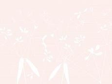 Grauweißfloral, Farbvariante: palerosa