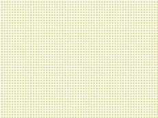 Karo, Farbvariante: midgrün