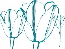 Tulpen II, Farbvariante: blaugrün