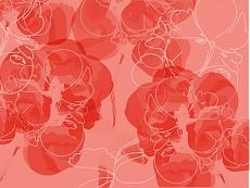 Blüten abstrakt 03