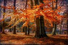 Autumn skirt III