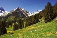 Bergsee im Frühling