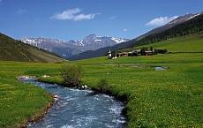 Frühling am Bergbach