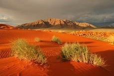 Sanddüne in der Wüste
