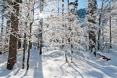 Winter auf dem Weg zum Herzogstand