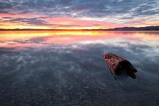 Treibholz bei Sonnenaufgang