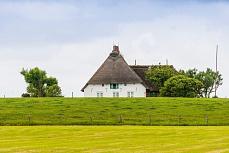 Weißes Bauernhaus auf der Hallig Langeness und Oland
