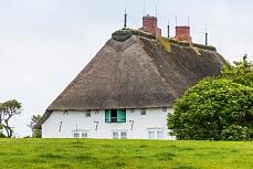 Blick auf ein weißes nordfriesisches Bauernhaus