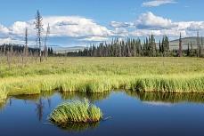 Alaskalandschaft