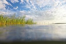 Bodenseewasserufer