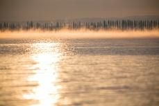 Frostmorgen Inseldamm