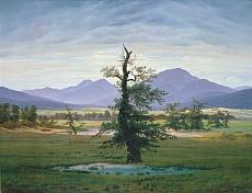 Kunst Tapete aus der Romantik - Caspar David Friedrich, Der einsame Baum