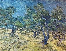 Olivenbäume (Les Oiliviers). 1889