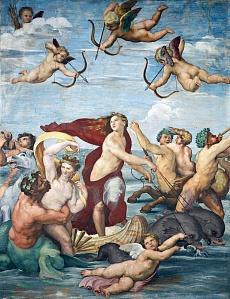Der Triumph der Galatea. Um 1511/1512