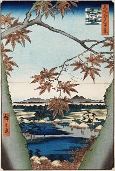 Ahornblätter, der Tekona Schrein und die Brücke