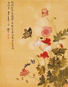 Mohnblumen und Schmetterlinge. 1702