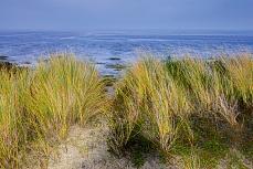 Schleswig-Holsteinisches Wattenmeer und Rantumer Dünen