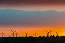 Stimmungsvolles Nordfriesland: Windräder in der Abendsonne