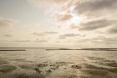 Nordfriesische Festlandküste bei Dagebuell