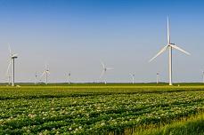 Windräder in Friedrich-Wilhelm-Luebke-Koog