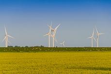 Sicht auf einen Windpark am Soenke-Nissen-Koog