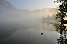 Morgennebel von Dagmar Schneider