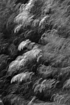 Light Movement von Dagmar Schneider