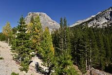 Ausblick auf den Polly Dome im Yosemite National Park