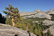 Ausblick auf den Tuolumne Meadows im Yosemite National Park