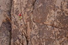 Felswand im Joshua tree desert im Joshua tree National Park in Kalifornien