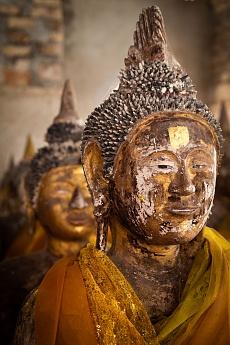 Buddha Assembly