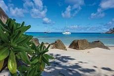Mahé Inselhuepfen mit Sea Pearl Anse Major