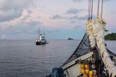 Mahé Inselhuepfen mit Sea Pearl Moyenne Island
