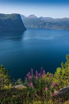 Blick auf den Stordalfjord