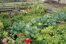 Bauerngarten in Aldein