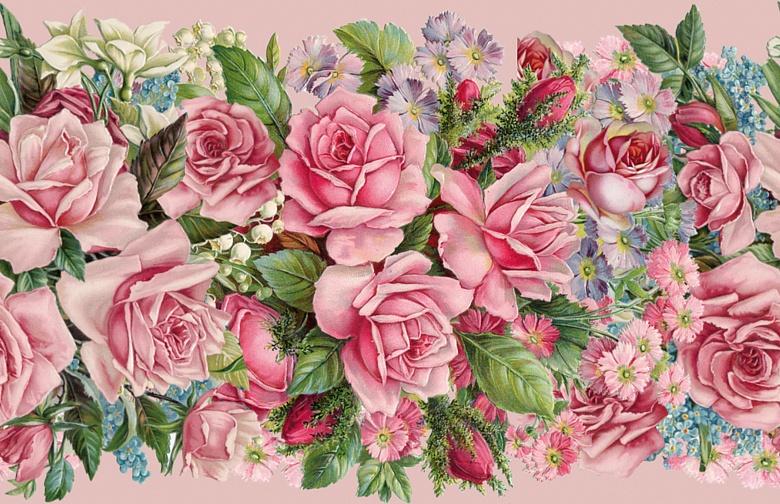 Designer Tapete Bordüre rosa Rosen | Tapeterie