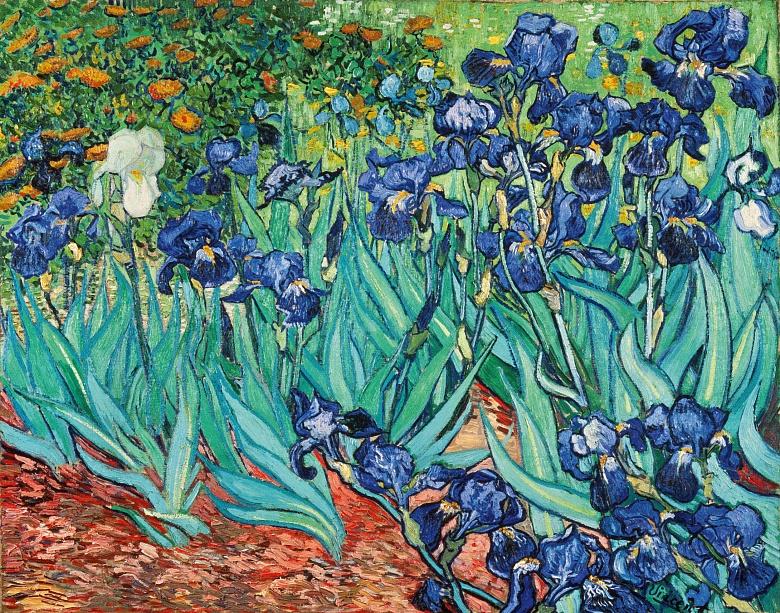 Iris. 1889
