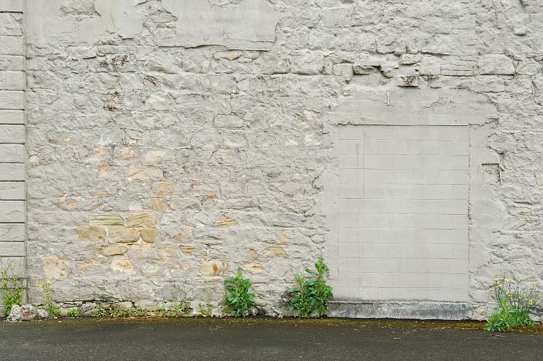 Tillamook Wall 3