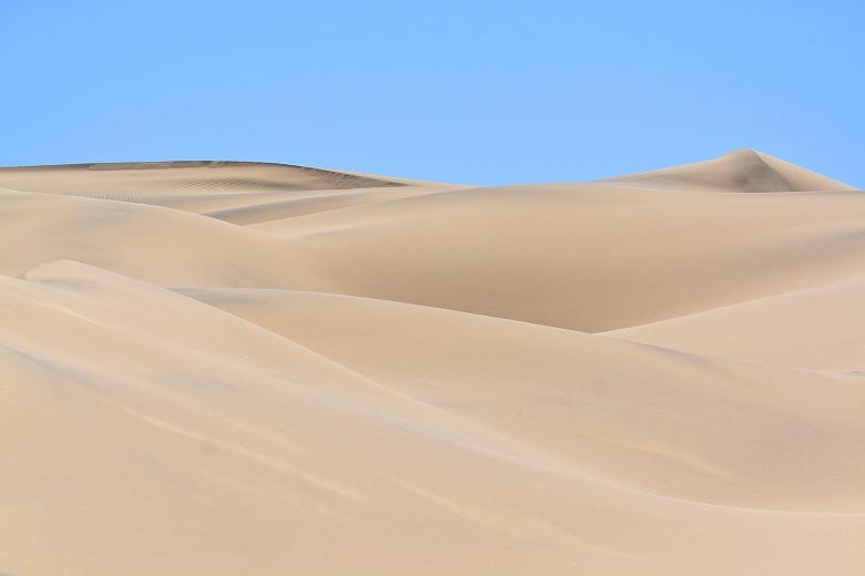Farbenspiel in den Dünen