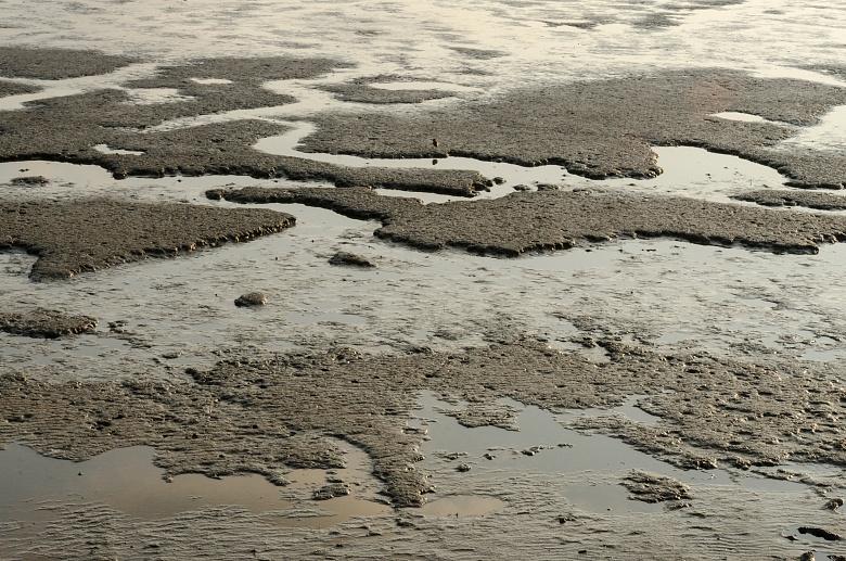 Strand bei Nordstrandischmoor auf Nordstrand