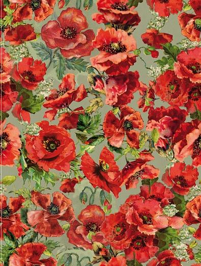 Designer tapete roter mohn romantisch tapeterie for Tapete romantisch