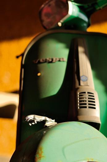 So schnell wie ein Jaguar … von Dagmar Schneider