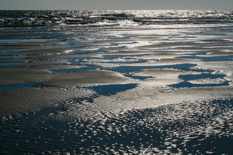 Strandabschnitt an der Amrumer Odde
